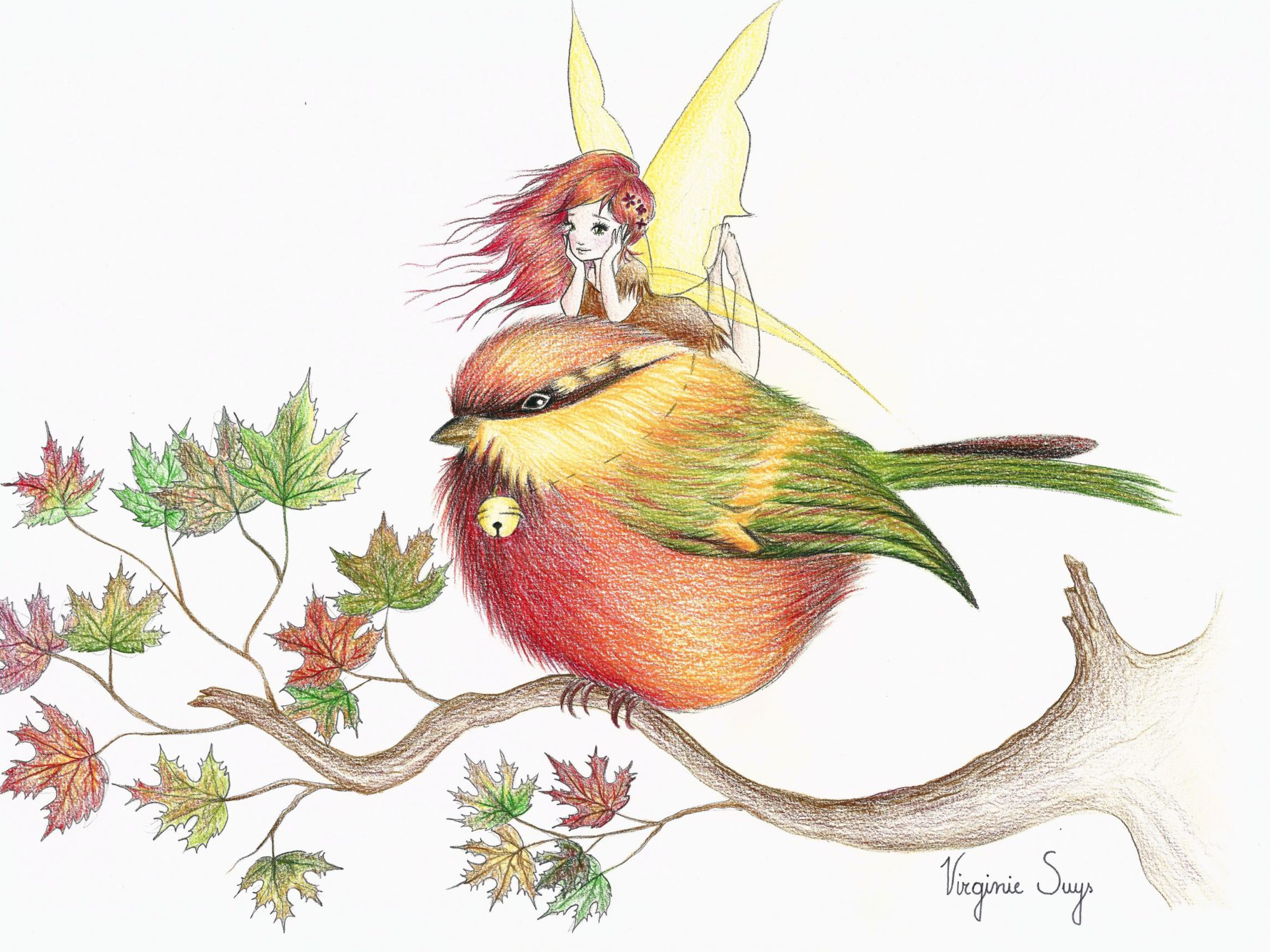 Virginie Suys Little red green bird & fairy illustration