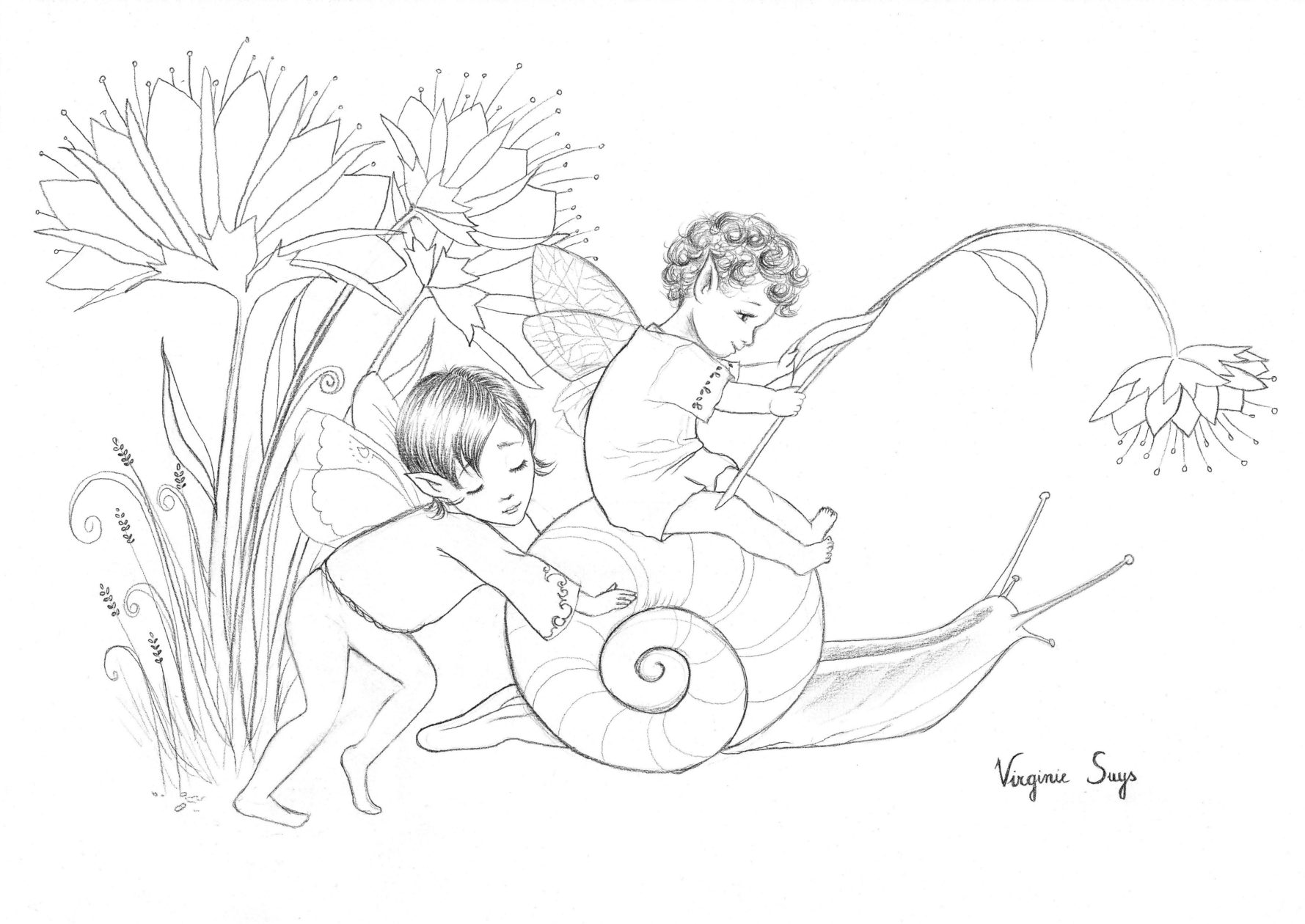 Virginie Suys Snail and fairys in black & white illustration