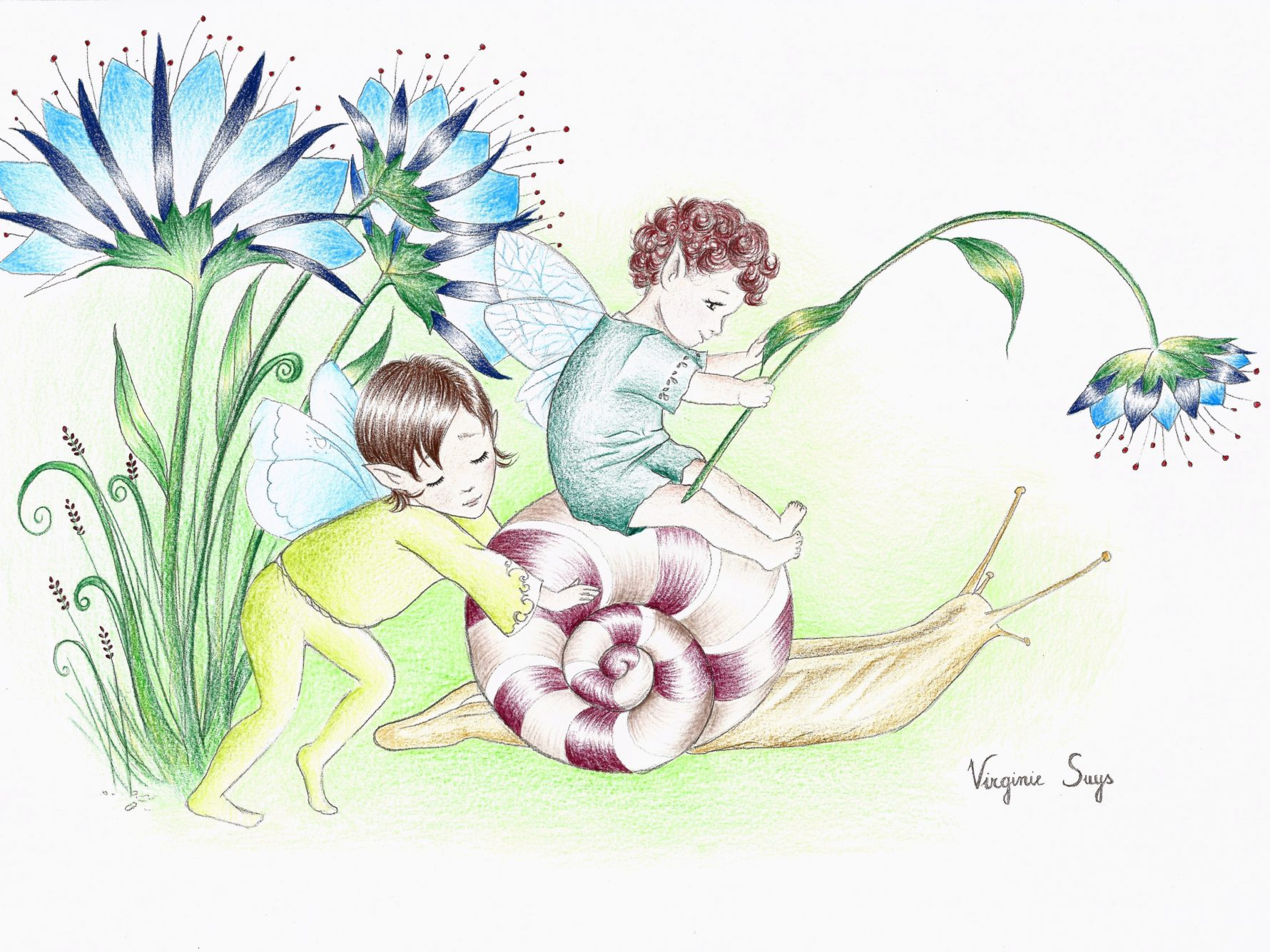 Virginie Suys Snail and fairys in green blue brown illustration