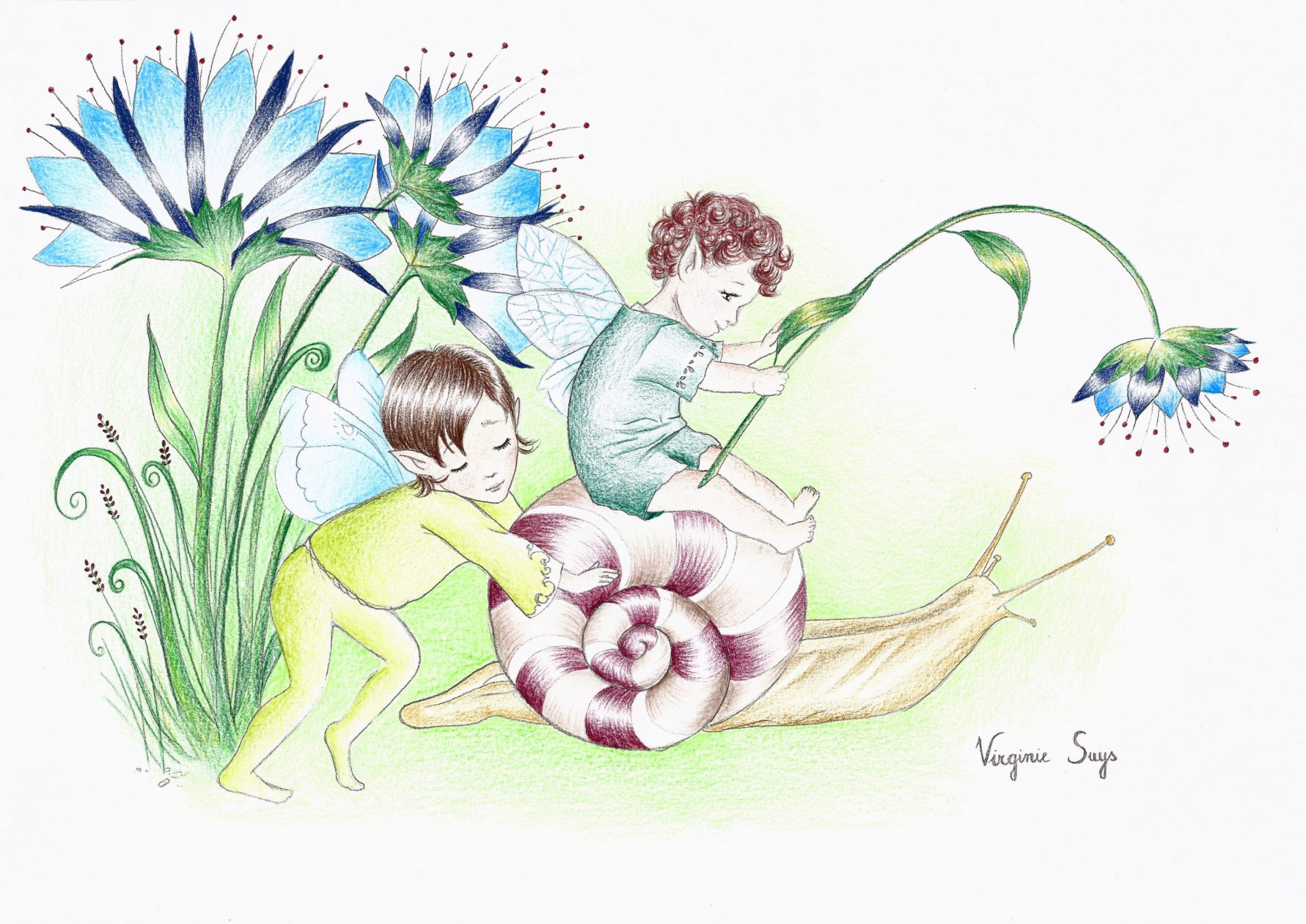 Snail and fairies with blue flowers