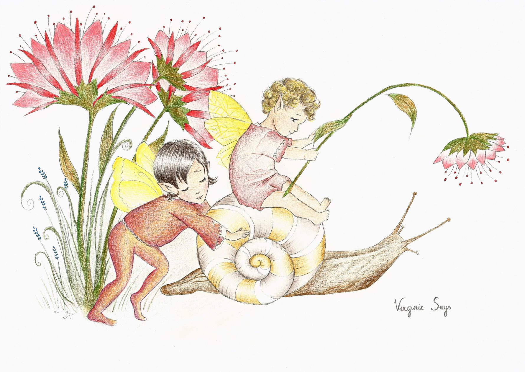 Snail and fairies with red flowers