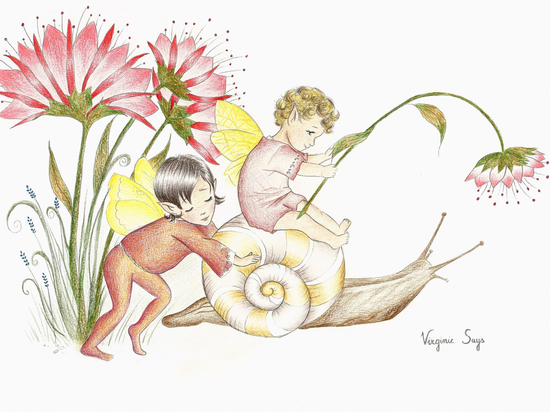 Virginie Suys Snail and fairys in red yellow brown illustration