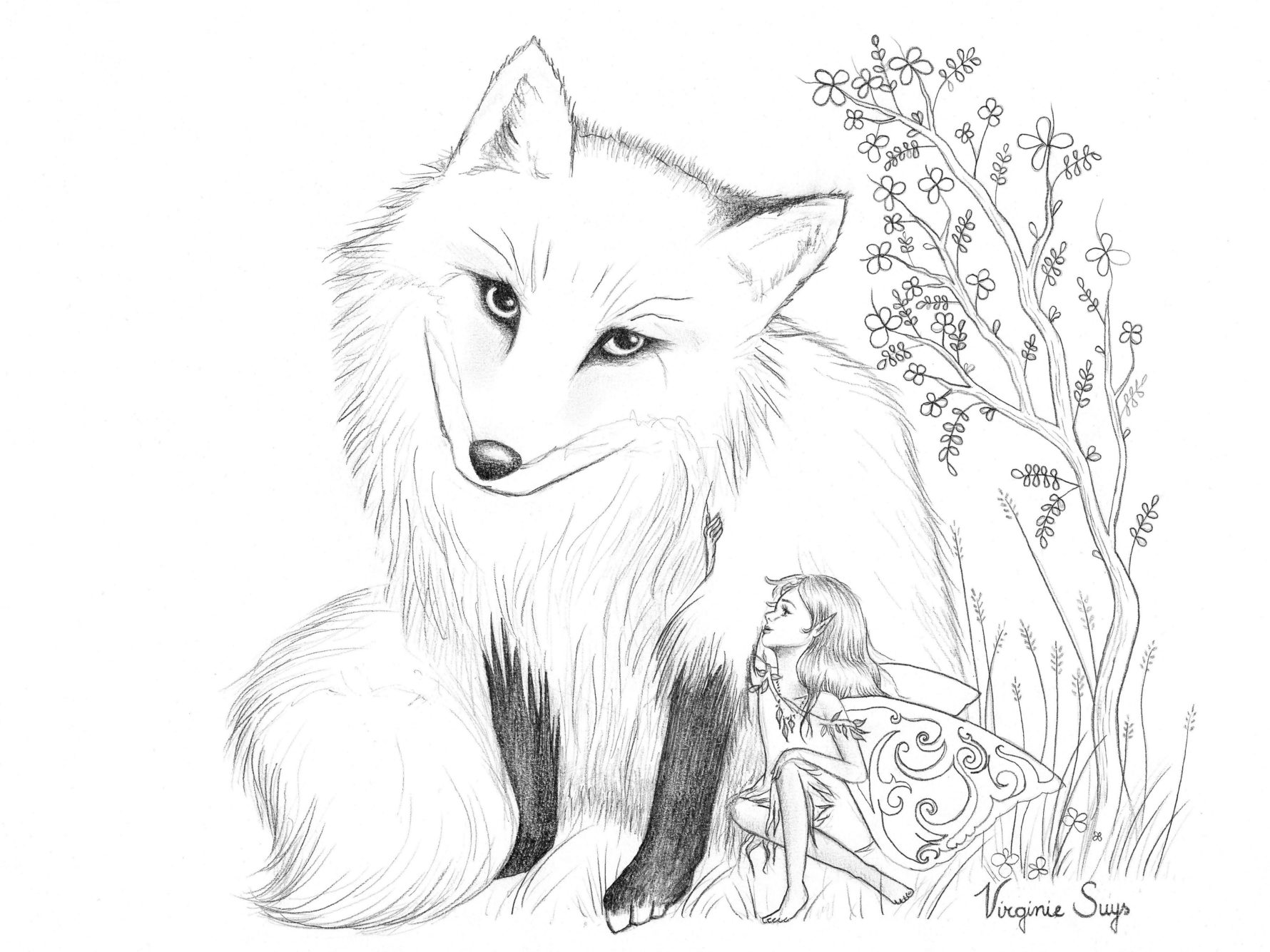 Virginie Suys Fox and fairy in black & white illustration