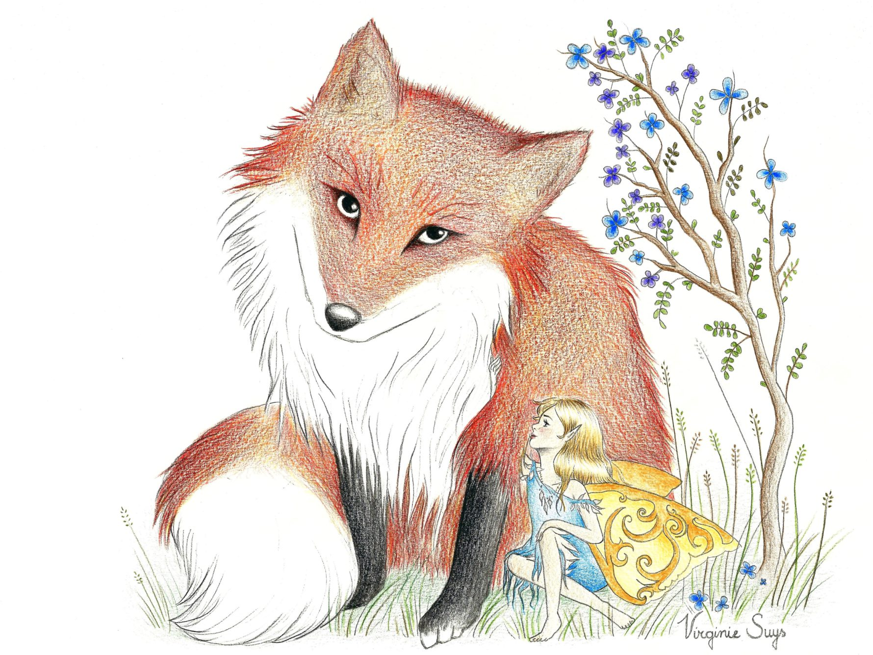 Virginie Suys Fox and fairy in red and blue illustration