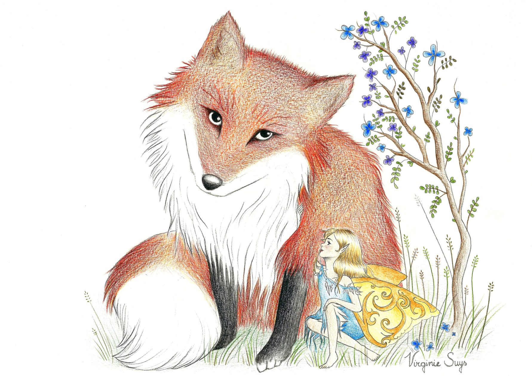 Red fox and fairy