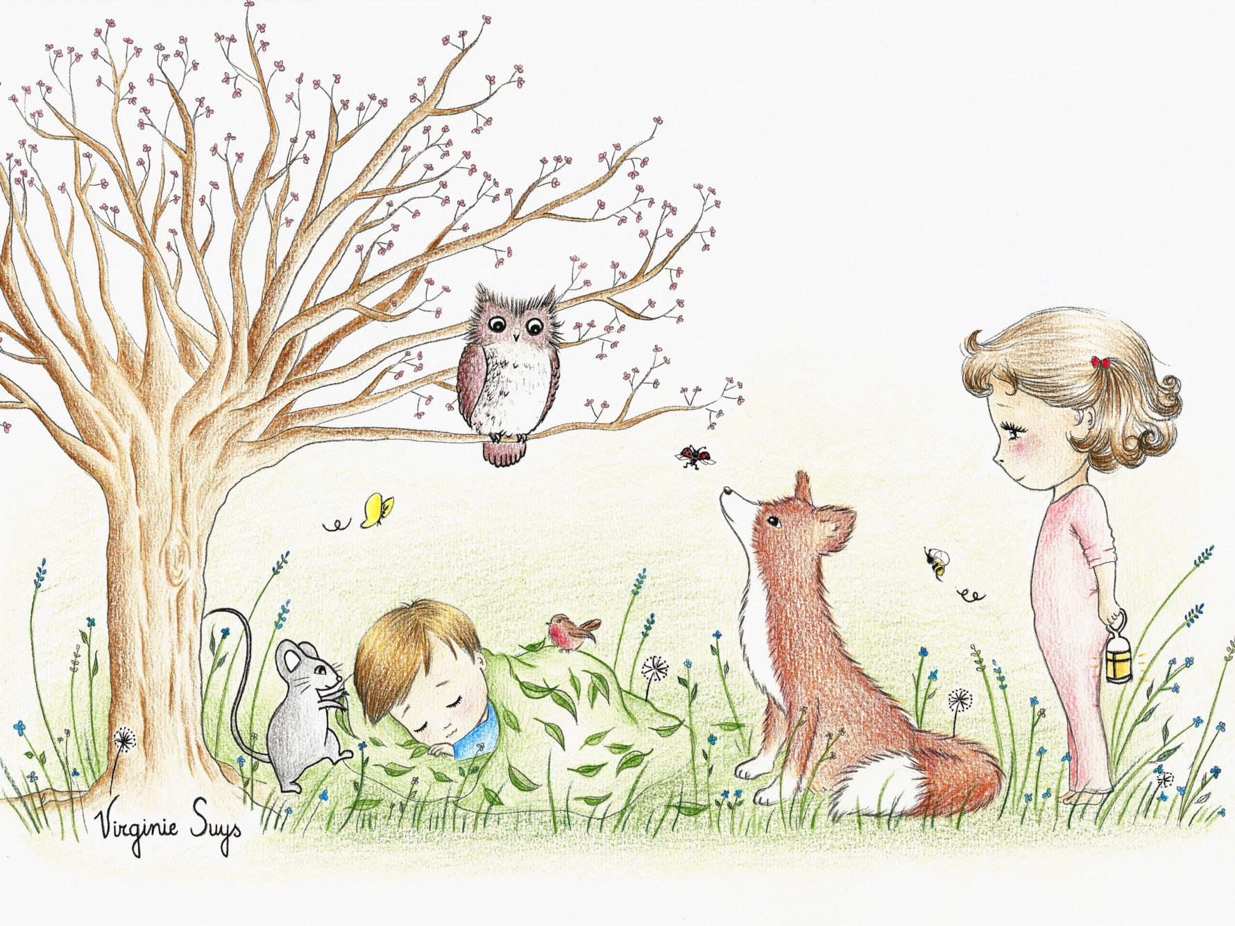 Virginie Suys Dreams in the forest in green & brown illustration