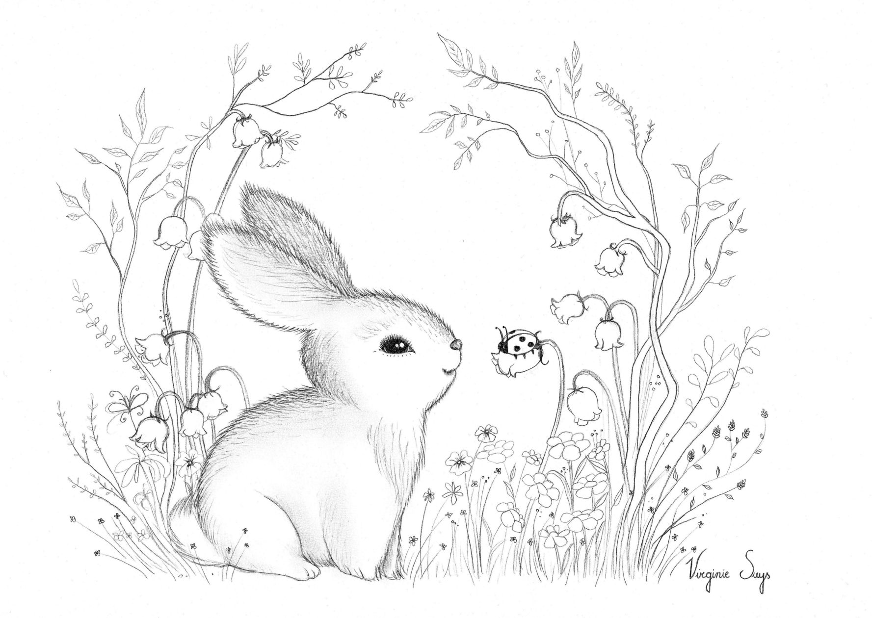 Virginie Suys Rabbit in flowers in black & white illustration