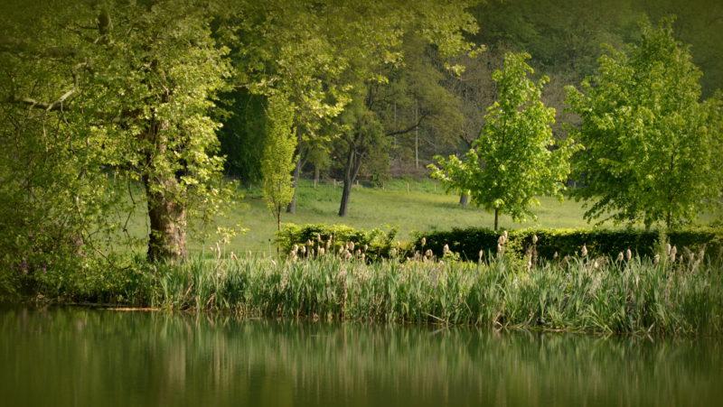 Countryside, Altembroek, Belgium -Virginie Suys Photo Canvas HD