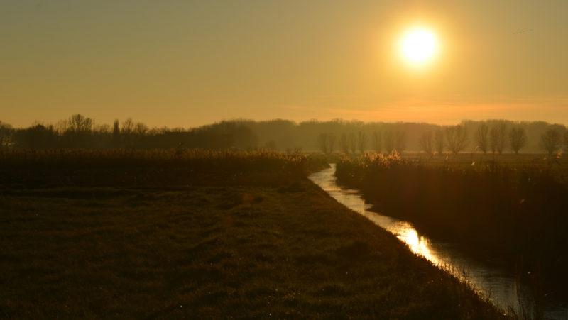 Canvas Brown Yellow sunset, Damme, Belgium -Virginie Suys Photo Canvas HD
